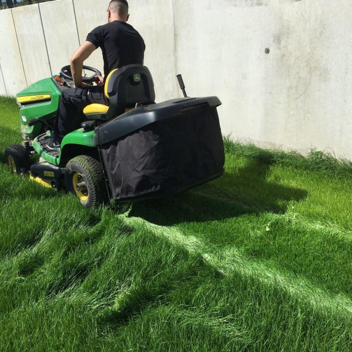 Grünanlage Pflege